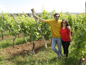 Adopt a vine gift in Alsace to learn about how wine is made