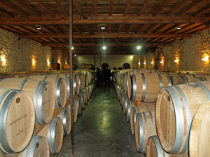 Learning about the interaction between wine and oak barrels