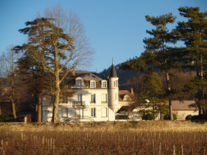 Organic wine-making experience gift in Burgundy France