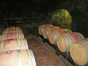 Winery and cellar tour gift in Burgundy, France