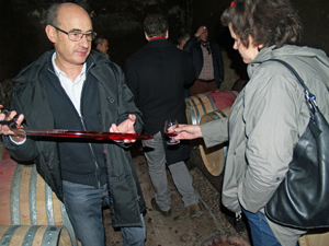 Wine making experience in Burgundy