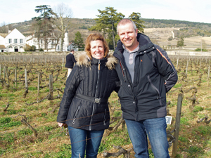 Rent a vine in Burgundy
