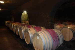 Make your own wine gift in an organic French winery