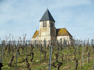 Wine making experience gift in Chablis, France