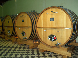 Ageing the wine in oak casks