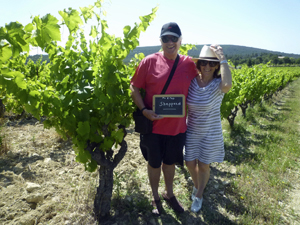 Rent-a-vine gift experience to learn about the art of winemaking