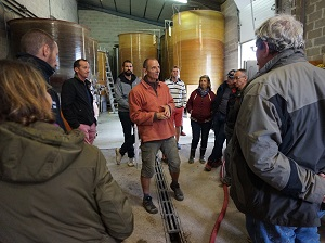 wine-making experience in a biodynamic vineyard in france