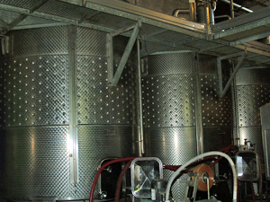 Winery tour Rhone Valley