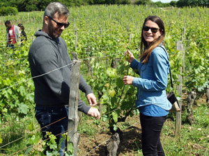 Original vineyard visit to participate in working on the vines