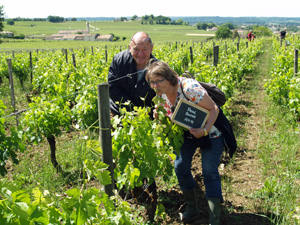 Rent-a-vine gift experience in an organic Saint Emilion vineyard