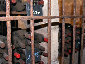 Cellar tour in Saint-Emilion to see the old bottles of wine