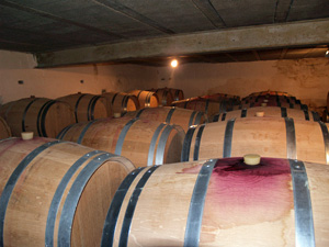 Visiting the oak wine barrels
