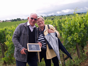 Rent-a-vine gift in Saint-Emilion