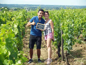 Rent some organic vines in Saint-Emilion and foloow the making of your personnalised wine