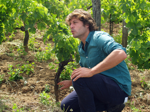 Learning the life of a winemaker