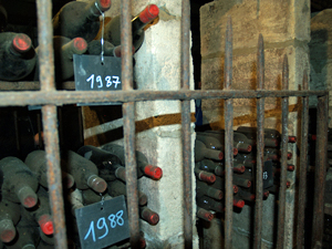 Cellar tour and visit in Saint-Emilion with the winemaker