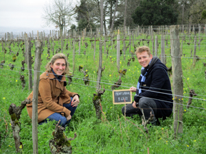 Rent-a-vine-gift in an award-winning organic vineyard