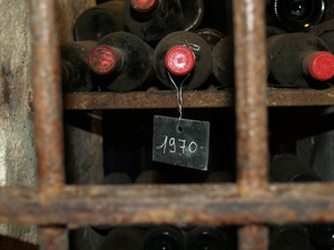 Winery tour and cellar visit in Saint-Emilion