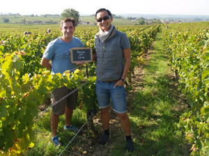Adopt-a-vine gift experience in Saint-Emilion
