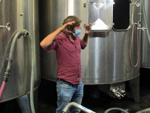 Winery tour and experience day with the winemaker