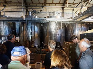 Wine-making and vine adoptione experience in mondragon,  france