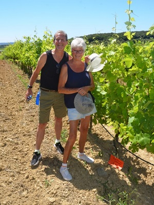 Adopt-a-vine experience in an organic French vineyard as a gift