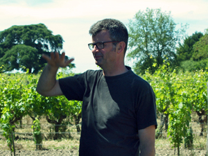 Organic vine tending lessons in the Loire Valley, France