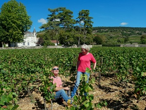 Adopt a vin experience in Burgundy france