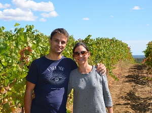 Vine adoption and harvest experience day in the South of France