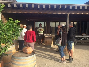 Meet an organic winemaker in teh Languedoc area France