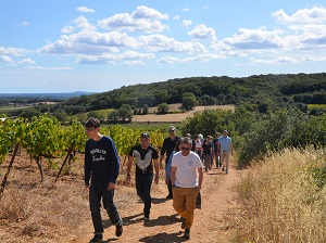 Adopt-a-vine-experience at Domaine Allegria in Languedoc, France