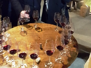 Wine tasting and wine-making course in France