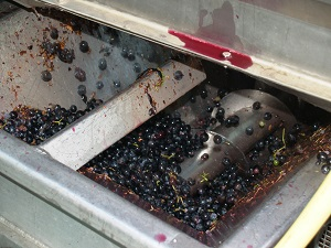 Small quantity of the 2018 vintage for organic french wines