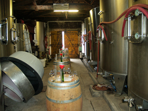 Wine-making exerience gift in Saint Emilion