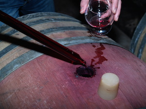 Wine course for fermenting, ageing and bottling the wine