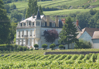 Domaine Chapelle, Santenay, Burgundy, France