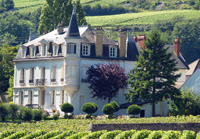 Unusual Christmas gift idea for a wine connoisseur.  Rent-a-vine at Domaine Chapelle, Santenay, Burgundy, France