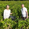 Client rating, rent an organic vine, Mondragon, Rhone Valley, France