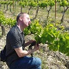 Customer feedback, adopt your own plot of vines, Cotes du Rhone, France