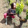 Customer reference, vine debudding experience gift experience in Bordeaux, France