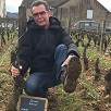 Customer rating, adopt your own plot of vines, Burgundy, France