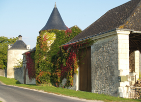 Rent-a-vine gift in the Loire Valley, France. Original Wine Experience Gifts