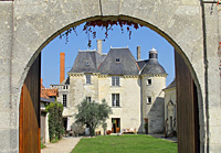 Organic Retirement Gift.  Rent a vine in the Loire Valley for an original retirement gift idea.