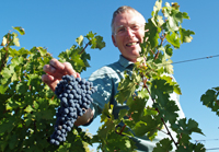 Original Wine Experience Gift for a retirement present.  Rent vines in France.