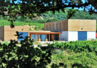 Unusual retirement gift idea. Rent-a-vine in the south of France at the Allegria vineyard, Pézenas, Languedoc-Roussillon