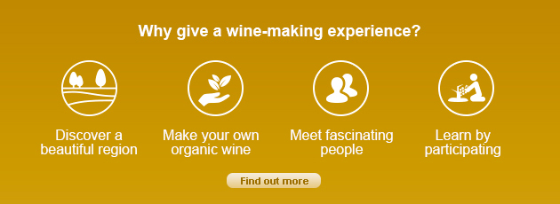Why give a wine-making experience?