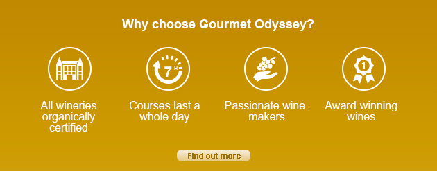 Unique wine experience with Gourmet Odyssey